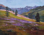 Enchanted Meadow, Chilcotin Mountains